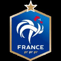 france-fanions-federation-francaise-de-football